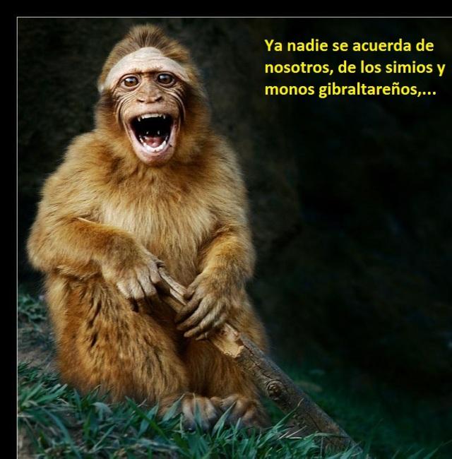 monogrito2
