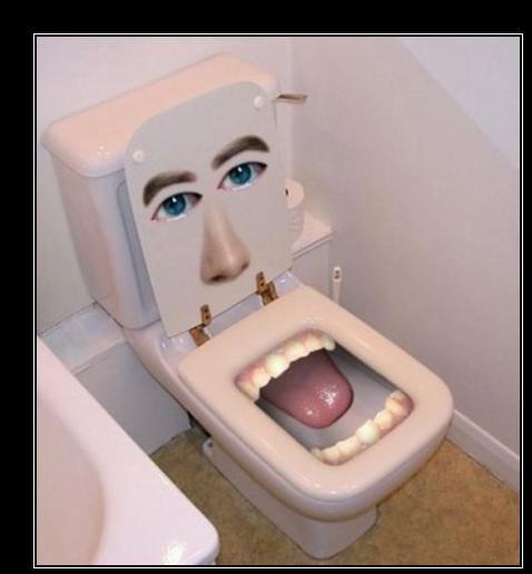 desmotivaciones graciosas de inodoro